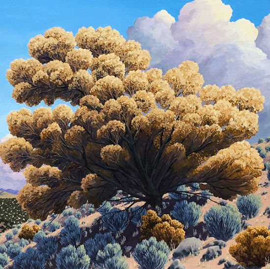 Doug West - Fall Sage Bloom