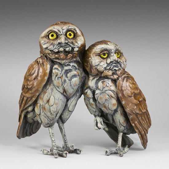Bryce Pettit - Burrowing Owls